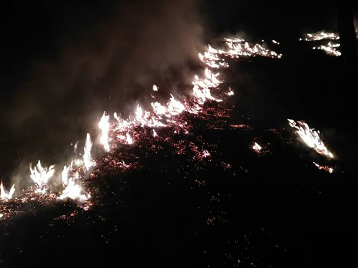 Fire broke out in forests in Pithoragarh's Berinag