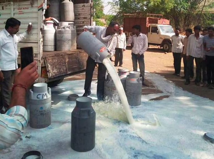 Farmer wasting milk by throughout on roads