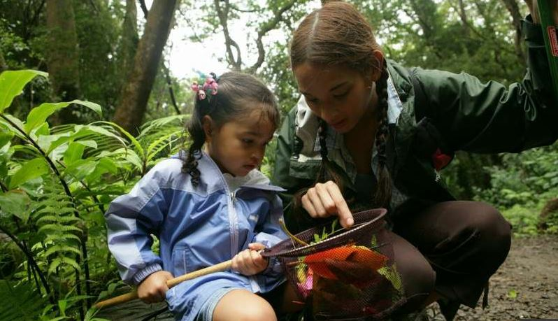 Nature boosts learning abilities of children