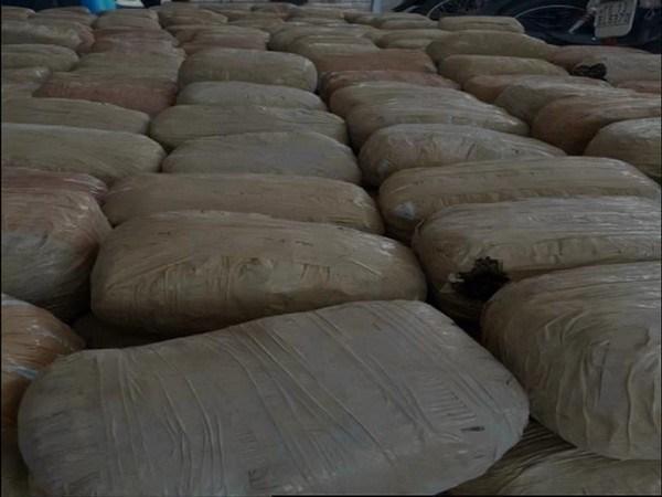 Cannabis seized in Hyderabad