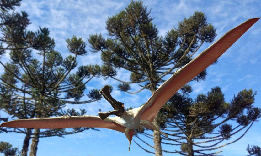 Australian Cretaceous Period pterosaur Ferrodraco lentoni