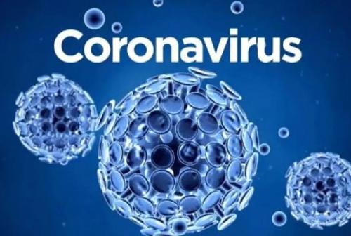 Coronavirus (File Photo)