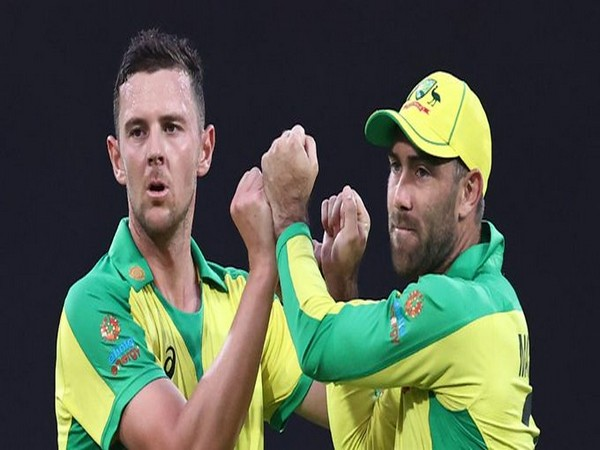 Josh Hazlewood and Glenn Maxwell in action against India in second ODI