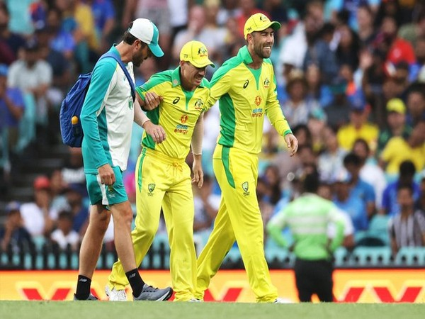 Australian batsman David Warner being assisted out of the field