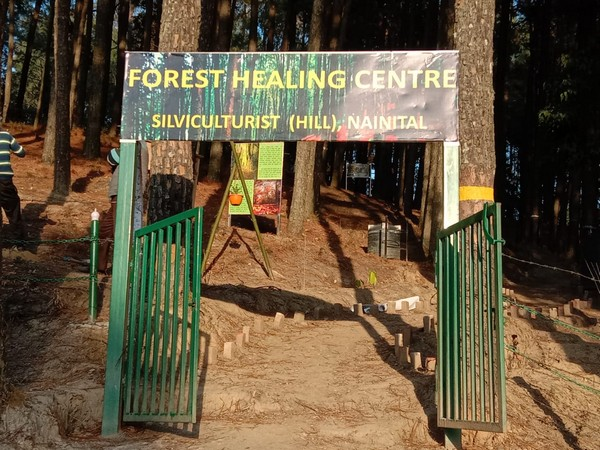 healing centre spread over an area of around 13 acres